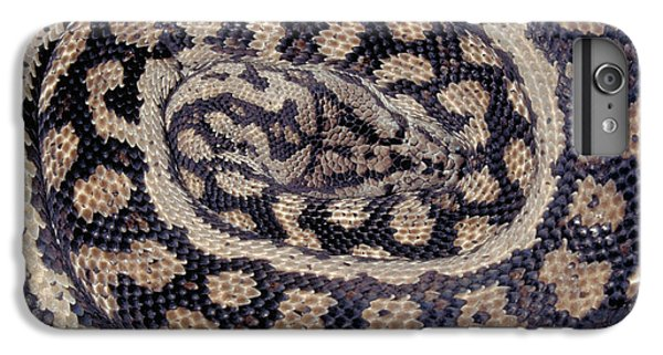 Inland Carpet Python  IPhone 6s Plus Case by Karl H Switak