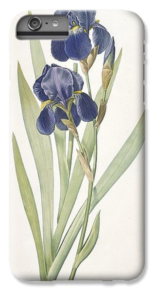 Iris Germanica Bearded Iris IPhone 6s Plus Case by Pierre Joseph Redoute