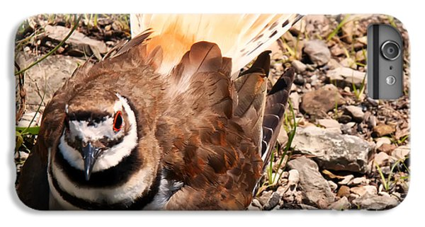 Killdeer On Its Nest IPhone 6s Plus Case