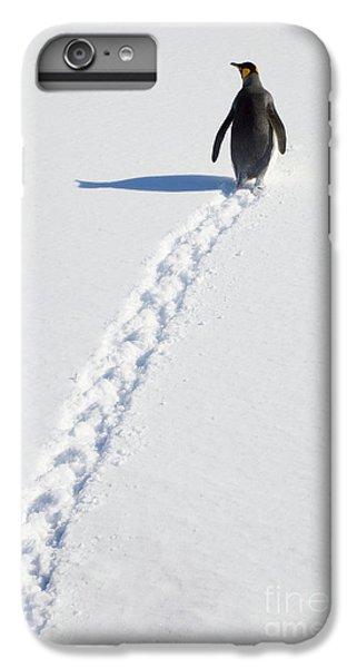 King Penguin And Tracks S Georgia Island IPhone 6s Plus Case by Yva Momatiuk and John Eastcott