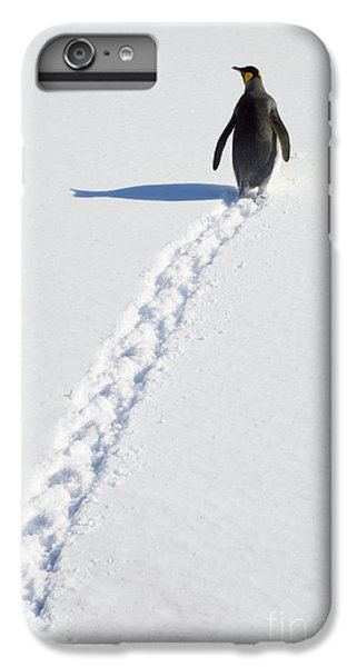 King Penguin And Tracks S Georgia Island IPhone 6s Plus Case by Yva Momatiuk and John Eastcott