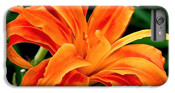 Kwanso Lily IPhone 6s Plus Case by Rona Black