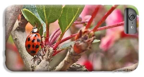 Ladybug And Crabapple IPhone 6s Plus Case