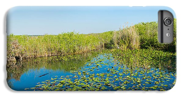 Anhinga iPhone 6s Plus Case - Lily Pads In The Lake, Anhinga Trail by Panoramic Images