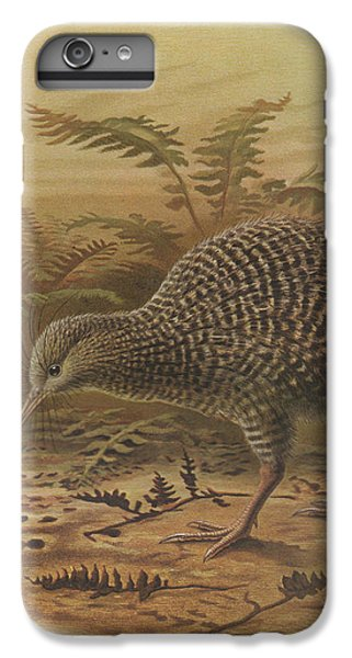 Kiwi iPhone 6s Plus Case - Little Spotted Kiwi by Dreyer Wildlife Print Collections