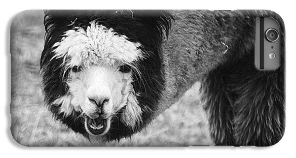 Llama IPhone 6s Plus Case