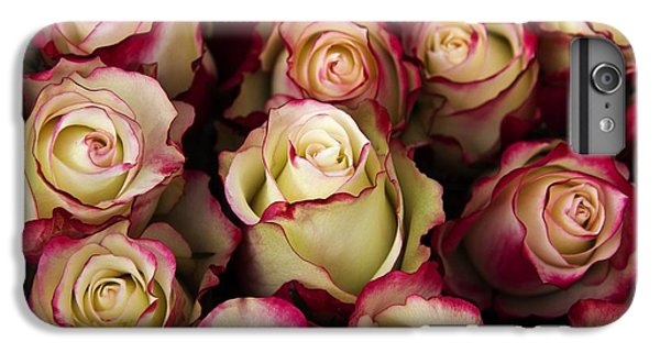 Love Is A Rose IIi IPhone 6s Plus Case