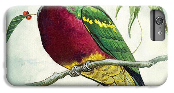Magnificent Fruit Pigeon IPhone 6s Plus Case by Bert Illoss