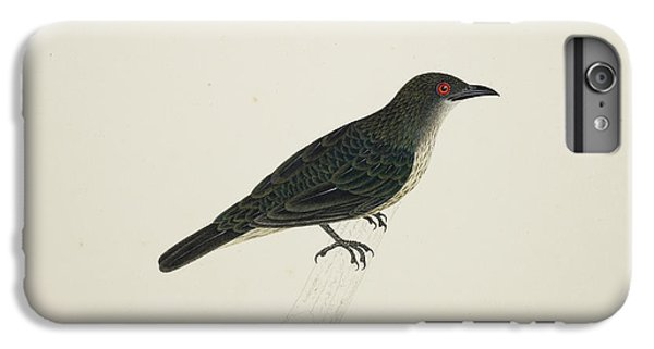Starlings iPhone 6s Plus Case - Malay Glossy Starling by British Library