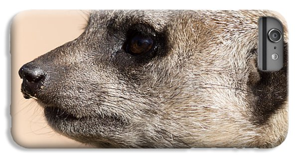 Meerkat Mug Shot IPhone 6s Plus Case by Ernie Echols