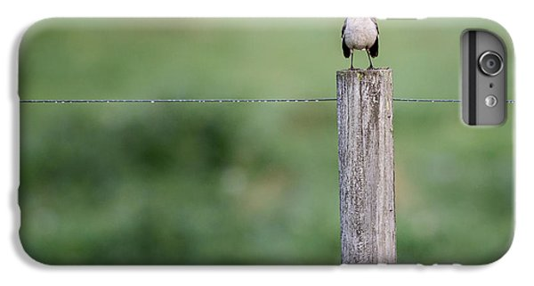 Minimalism Mockingbird IPhone 6s Plus Case by Bill Wakeley