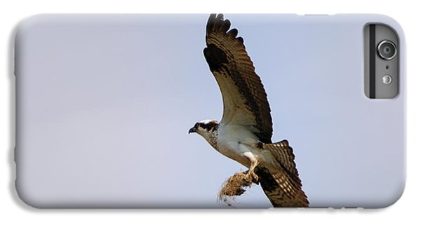 Osprey iPhone 6s Plus Case - Nest Builder by Mike  Dawson