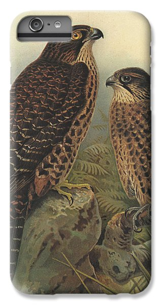 New Zealand Falcon IPhone 6s Plus Case by Dreyer Wildlife Print Collections