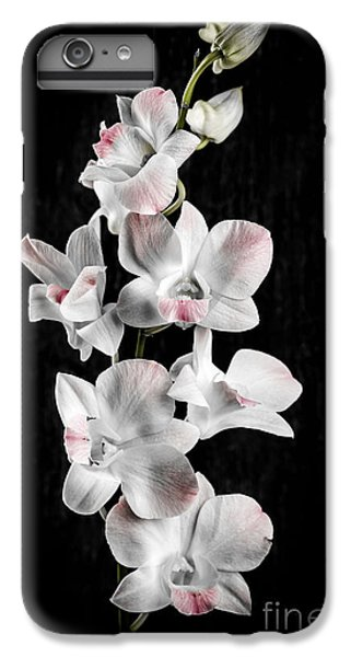 Orchid Flowers On Black IPhone 6s Plus Case by Elena Elisseeva