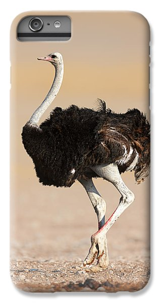 Ostrich IPhone 6s Plus Case by Johan Swanepoel