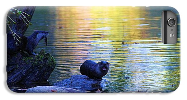 Otter Family IPhone 6s Plus Case by Dan Sproul