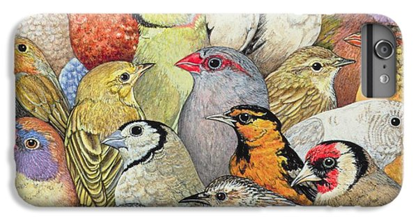 Wren iPhone 6s Plus Case - Patchwork Birds by Ditz