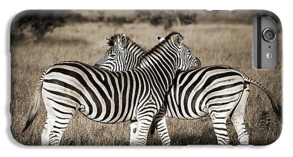 Zebra iPhone 6s Plus Case - Perfect Zebras by Delphimages Photo Creations