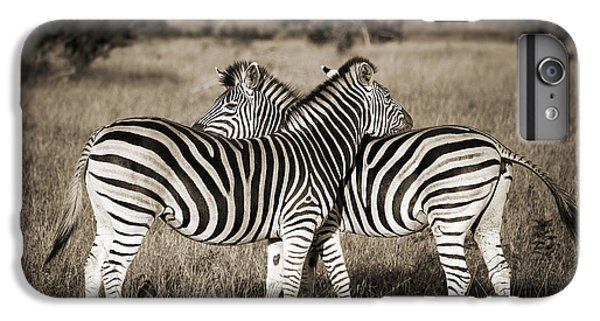 Perfect Zebras IPhone 6s Plus Case by Delphimages Photo Creations