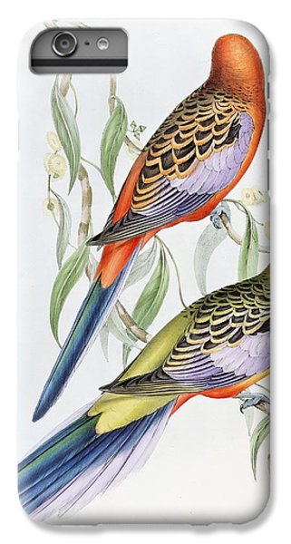 Parakeet iPhone 6s Plus Case - Platycercus Adelaidae From The Birds Of Australia by John Gould