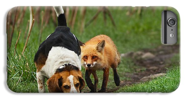 Fox iPhone 6s Plus Case - Probably The World's Worst Hunting Dog by Mircea Costina Photography