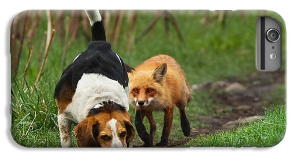 Probably The World's Worst Hunting Dog IPhone 6s Plus Case by Mircea Costina Photography