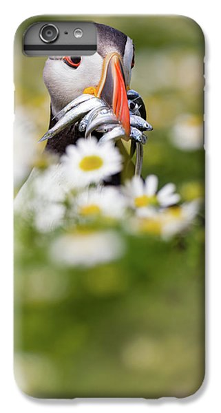 Puffin iPhone 6s Plus Case - Puffin & Daisies by Mario Su?rez