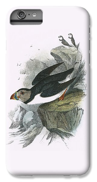 Puffin IPhone 6s Plus Case by English School