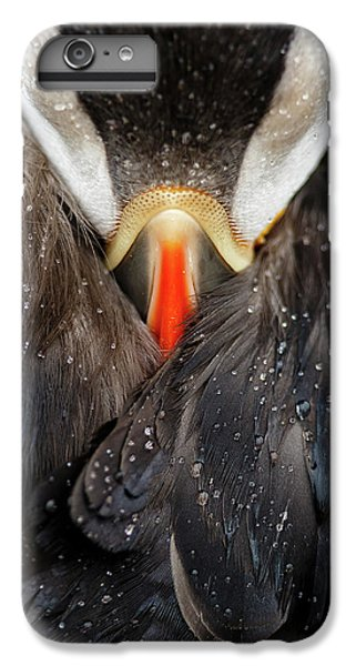 Puffin iPhone 6s Plus Case - Puffin Studio by Mario Su?rez