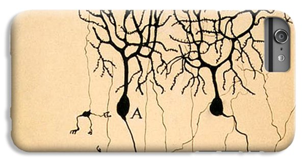 Pigeon iPhone 6s Plus Case - Purkinje Cells By Cajal 1899 by Science Source