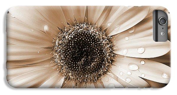 Raindrops On Gerber Daisy Sepia IPhone 6s Plus Case