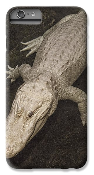 Rare White Alligator IPhone 6s Plus Case