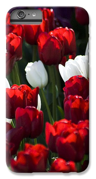 Red And White Tulips IPhone 6s Plus Case by Yulia Kazansky