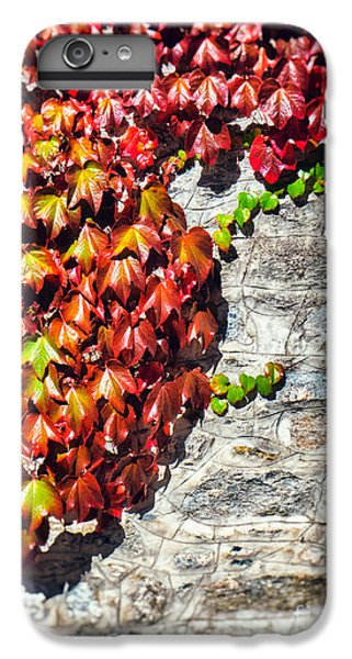 IPhone 6s Plus Case featuring the photograph Red Ivy On Wall by Silvia Ganora