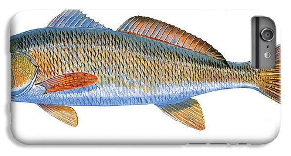 Drum iPhone 6s Plus Case - Redfish by Carey Chen