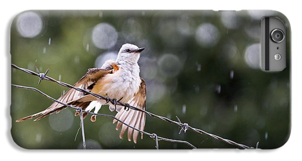 Revelling In The Rain IPhone 6s Plus Case by Annette Hugen