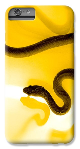 S IPhone 6s Plus Case by Holly Kempe
