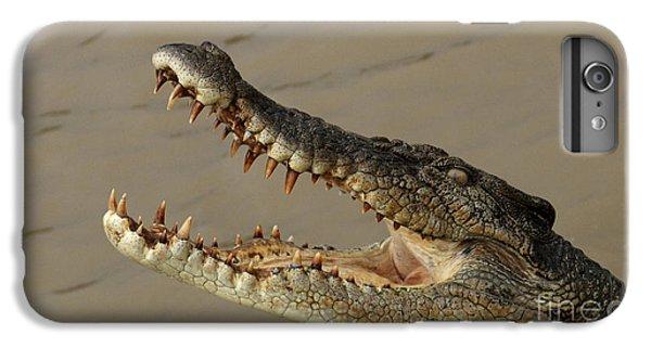 Salt Water Crocodile 1 IPhone 6s Plus Case by Bob Christopher