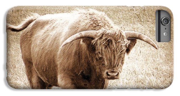 IPhone 6s Plus Case featuring the photograph Scottish Highlander Bull by Karen Shackles