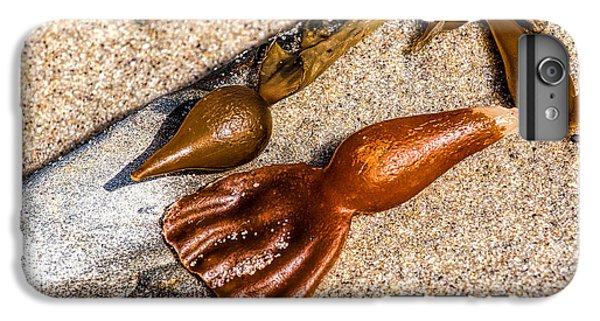 Sea Jewels IPhone 6s Plus Case