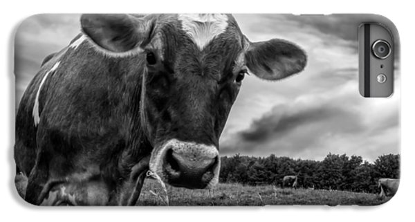 Cow iPhone 6s Plus Case - She Wears Her Heart For All To See by Bob Orsillo