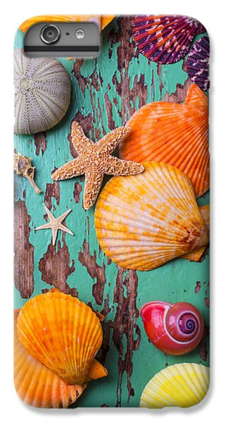 Shells On Old Green Board IPhone 6s Plus Case