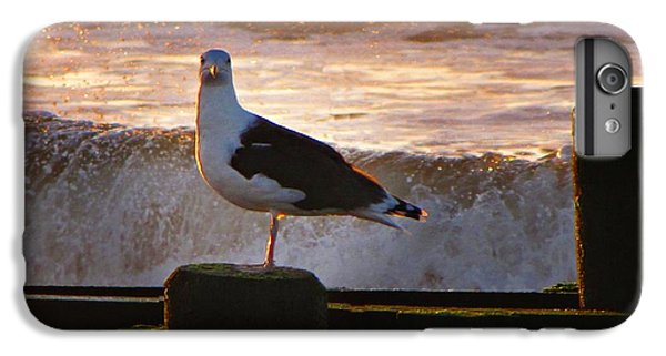 Sittin On The Dock Of The Bay IPhone 6s Plus Case by David Dehner