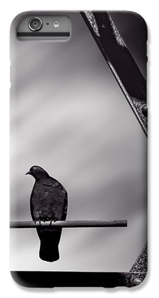 Pigeon iPhone 6s Plus Case - Sitting On A Stick by Bob Orsillo