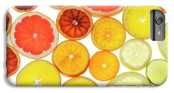 Slices Of Citrus Fruit IPhone 6s Plus Case by Cordelia Molloy