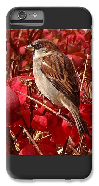 Sparrow IPhone 6s Plus Case