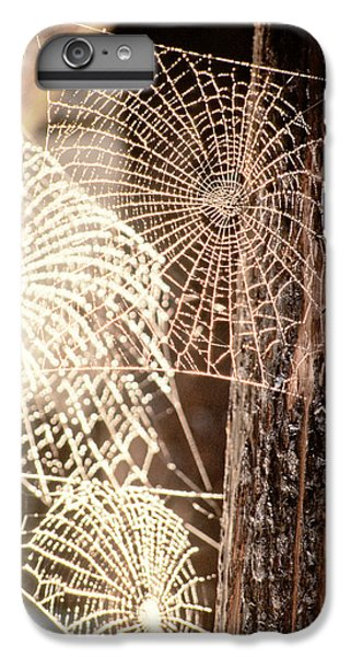 Spider Webs IPhone 6s Plus Case by Anonymous