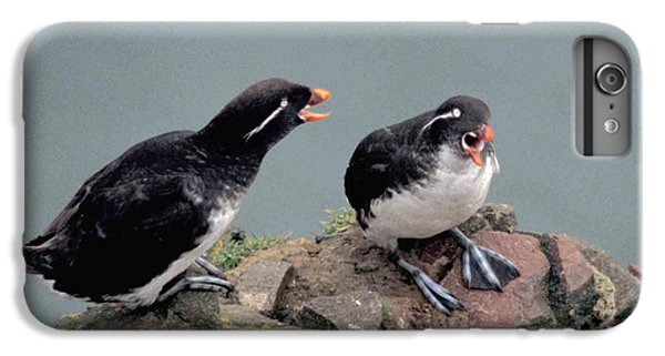 Auklets iPhone 6s Plus Case - Stop Whining by F Hughes