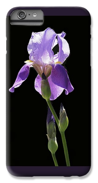 Sun-drenched Iris IPhone 6s Plus Case by Rona Black