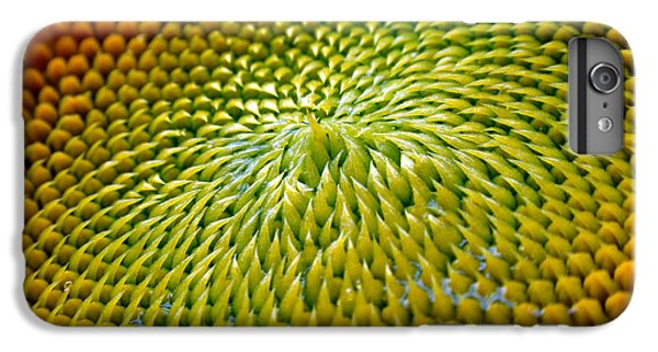 Sunflower  IPhone 6s Plus Case